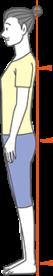 正しい立ち姿勢のイラスト
