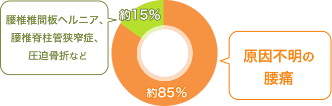 85%は原因不明の「腰痛症」と診断される割合を示すグラフ